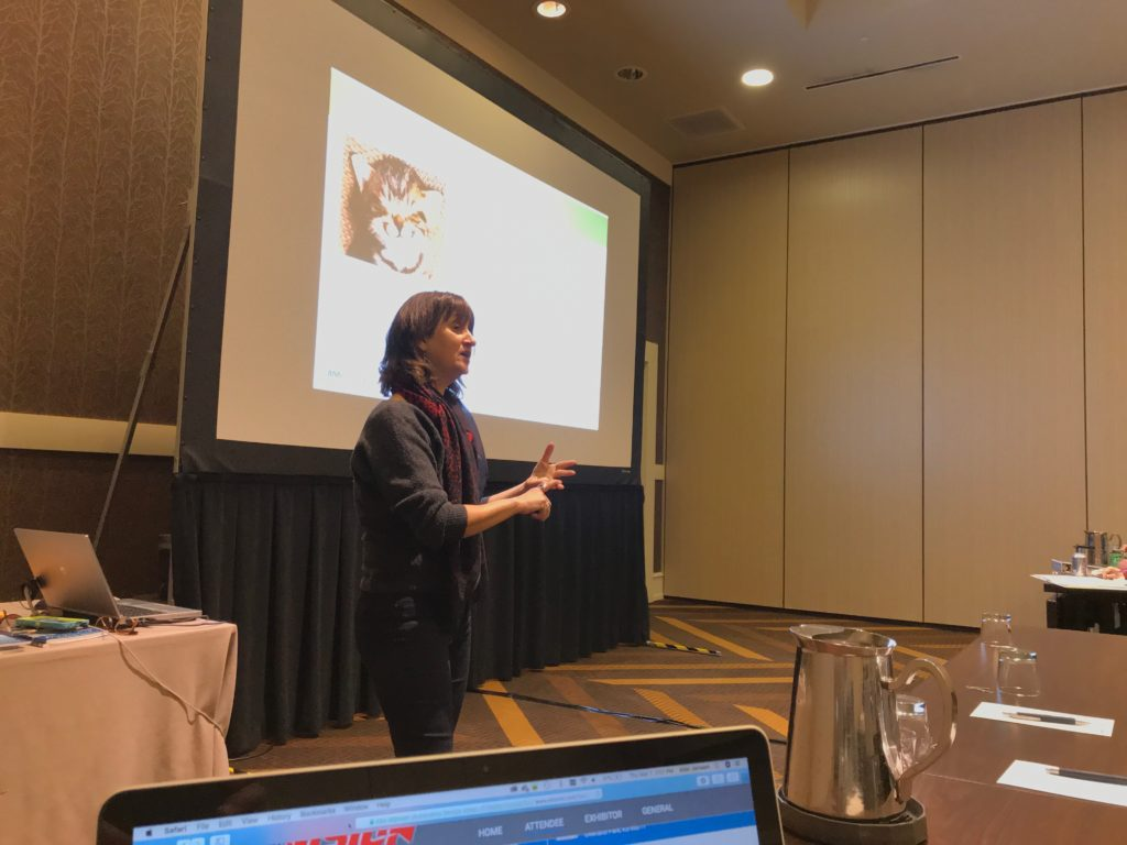 Amy Mattinat teaches class at ASA's Vision Hi-Tech Training and Expo